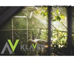 Holandia - Praca w szklarni z kwiatami-dużo godzin