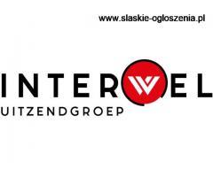 Praca na produkcji recykling Holandia